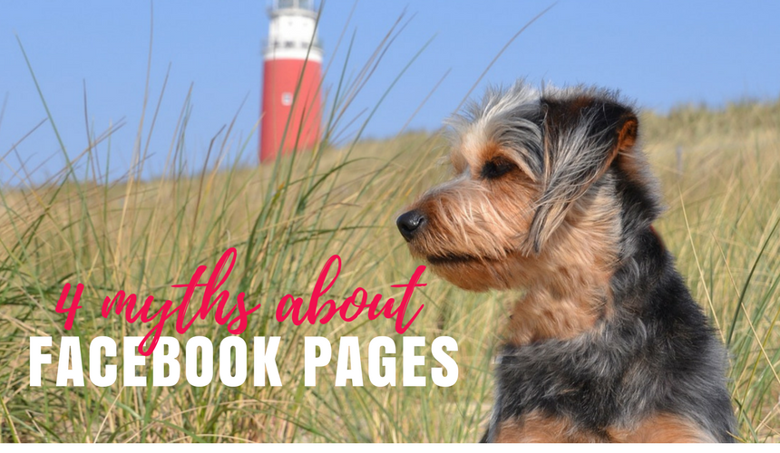 4 Myths About Facebook Pages for Small Businesses