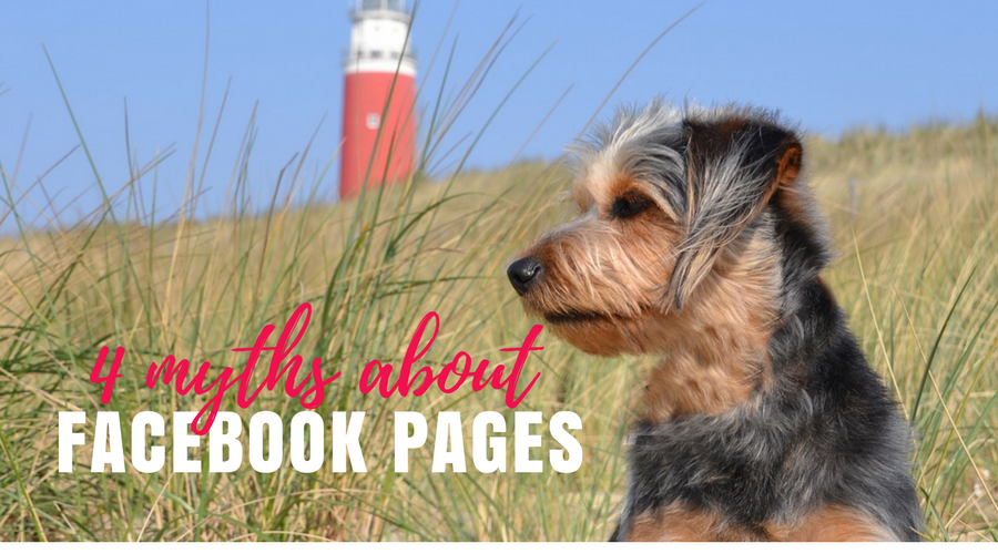 4 myths about facebook pages