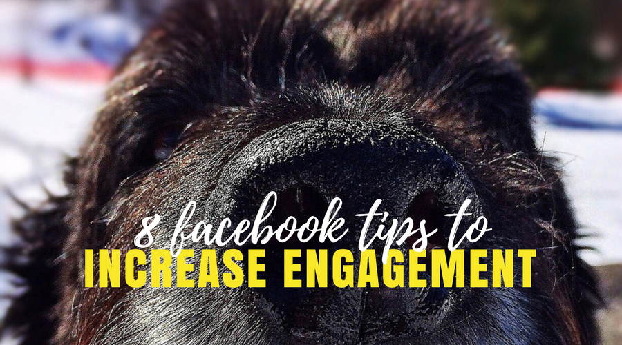 8 facebook tips to increase enagement
