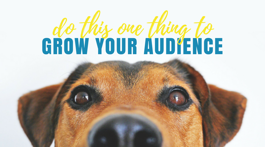 Do this one thing to grow your audience
