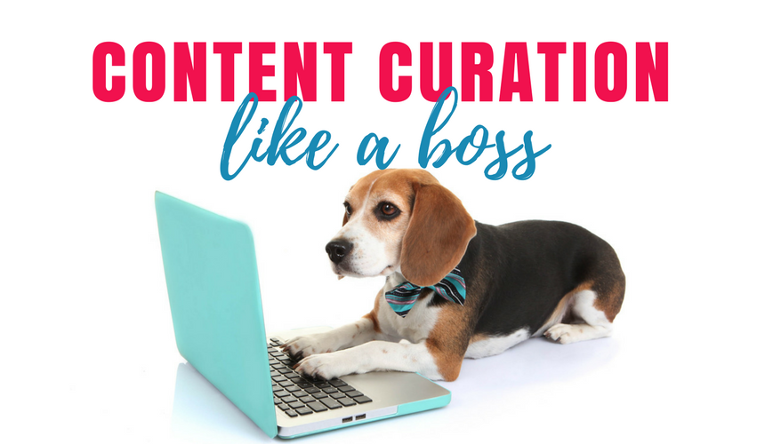 What is Content Curation and How Will it Grow Your Business?