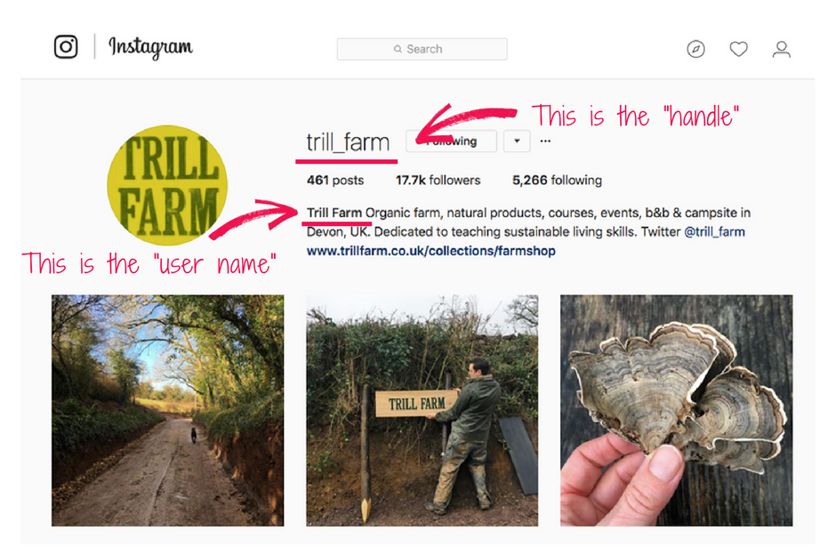 Instagram for Beginners - Completing your Instagram profile