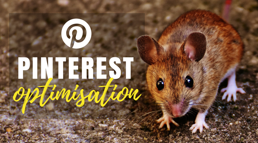 Pinterest Optimisation for Small Business Owners
