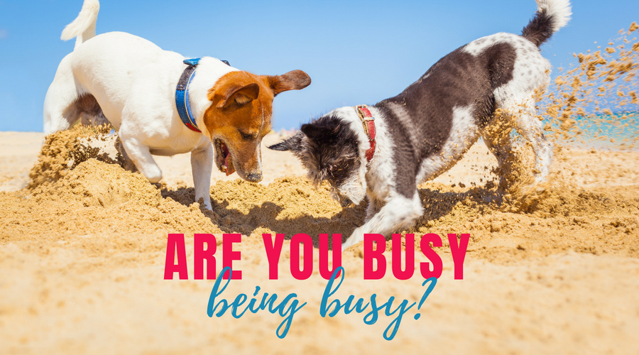 Are you busy being busy?