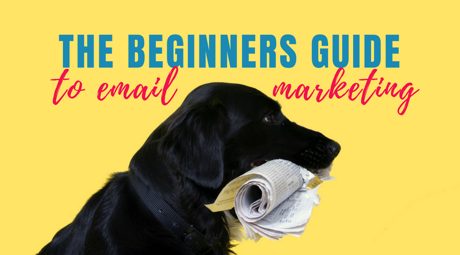 The Beginners Guide to Email Marketing