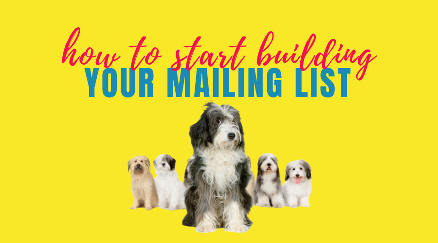 How to start building your mailing list