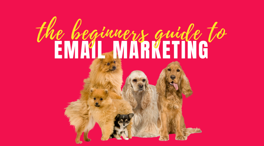 Email Marketing - 10 Basic Steps a Free Webinar